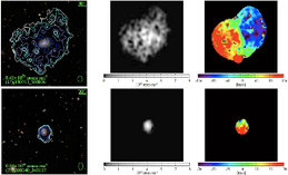 "How is cold gas accreted in galaxies? Observers and theorists from MPA have joined their efforts to investigate the radial distribution of atomic gas in unusually gas-rich nearby galaxies. They found a universal shape for the radial profiles of the gas in the outer regions of the observed galaxies, and obtained remarkable agreement with simulations. In half the galaxies, the atomic gas may have been accreted in the form of ""rings""."