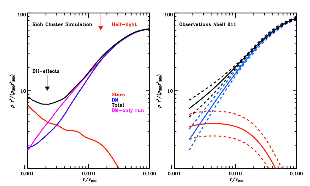 <p><strong>Figure 3:</strong> Density profiles of simulated and real clusters. Left Panel: Density profile for one of the re-simulated galaxy cluster. The black, red and blue lines represent the distribution of total (stars+dark matter), dark matter and stellar mass. The magenta line corresponds to the distribution of matter in a dark-matter-only run of the cluster (where the contribution of stars in galaxies was completely neglected). The total mass profile as a whole is very similar to the dark-matter-only run except where the density of stars overtakes that of the dark matter. The final dark matter profile on the other hand is shallower than the original dark-matter-only run already at the half-light radius of the BCG marked by the red arrow. The black arrow shows the radius where effects from black hole mergers would significantly affect the distribution of stars and dark matter in the BCG core. Right Panel: Density profile for one of the clusters in the Newman et al. (2013) sample, Abell 611. Black, red and blue lines represent the contributions from total, stellar and dark matter respectively. The dashed lines mark the 1-sigma error on the modelling. The mass distribution in this cluster is quite similar to one of the simulated clusters in the left panel. </p>