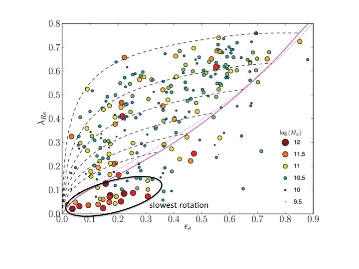 Over the last two years an international team of astronomers participating in the ATLAS3D project has presented the rotation properties of all early-type (elliptical and lenticular) galaxies in a well defined volume (42Mpc) of the nearby Universe. To the surprise of the team the stellar components of the most massive observed galaxies (~ 1011 Msun) in our neighbourhood show no global rotation signatures, in contrast to the regular rotation patterns observed for the majority of lower mass early-type galaxies.