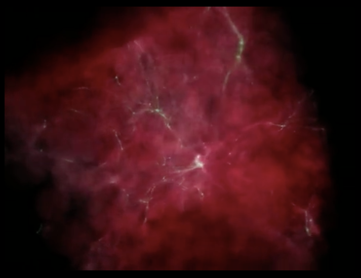 Simulations like the one depicted in the Figure can be used to study the properties of the first galaxies.