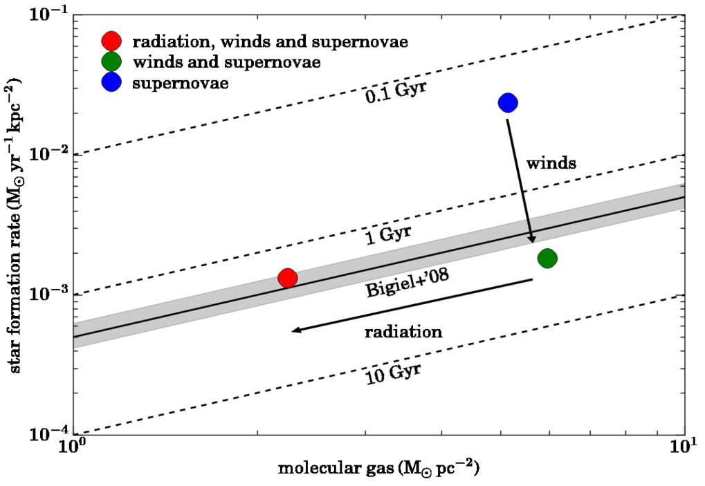 <p>Fig. 3: The simulations predict the effect of supernova feedback (blue) in the combination with stellar winds (green) and stellar radiation (red) on the star formation rate and the mass in molecular gas. Stellar winds reduce the amount of newly forming stars but do not affect the molecular gas (blue to green). Additional stellar radiation destroys molecular gas but does not change the star formation rate (green to red). Observed galaxies lie in the grey shaded area. The timescales by which all molecular gas would be converted into stars (depletion time - the ratio of star formation rate to molecular gas mass) are indicated by the dotted lines. For galaxies this timescale is around 2 billion years in good agreement with simulations including stellar winds, radiation and supernova explosions. </p>