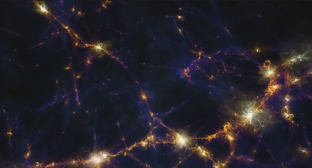 Blue/purple shows regions of low magnetic energy along filaments of the cosmic web, whereas orange and white indicate regions with significant magnetic energy inside halos and galaxies. The displayed region is taken from the TNG100 simulation and is 10 megaparsec wide.