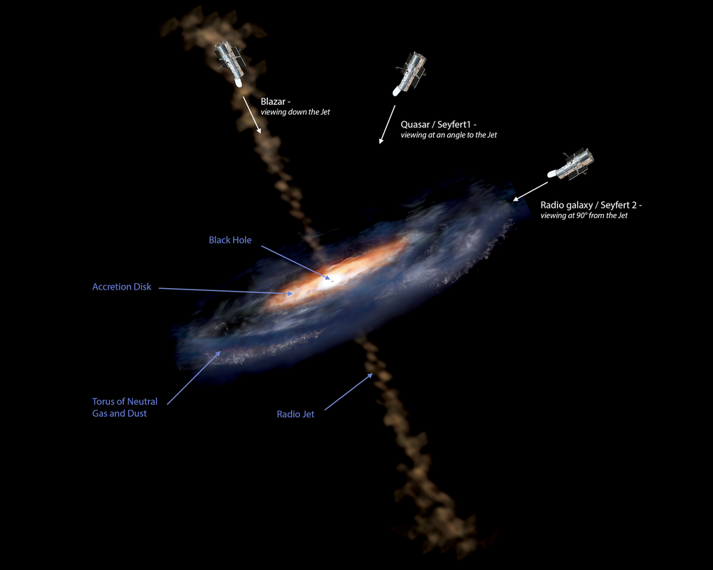 Figure 1: This illustration shows the different features of an active galactic nucleus (AGN). The extreme luminosity of an AGN is powered by accretion onto a supermassive black hole. In addition to the accretion disk, models of active galaxies also include a region of cold gas and dust, the torus. Viewed edge-on, the torus blocks out the light from the accretion disk and the system is a Type II AGN. Viewed face-on, the accretion disk dominates the luminosity and the system is a quasar.