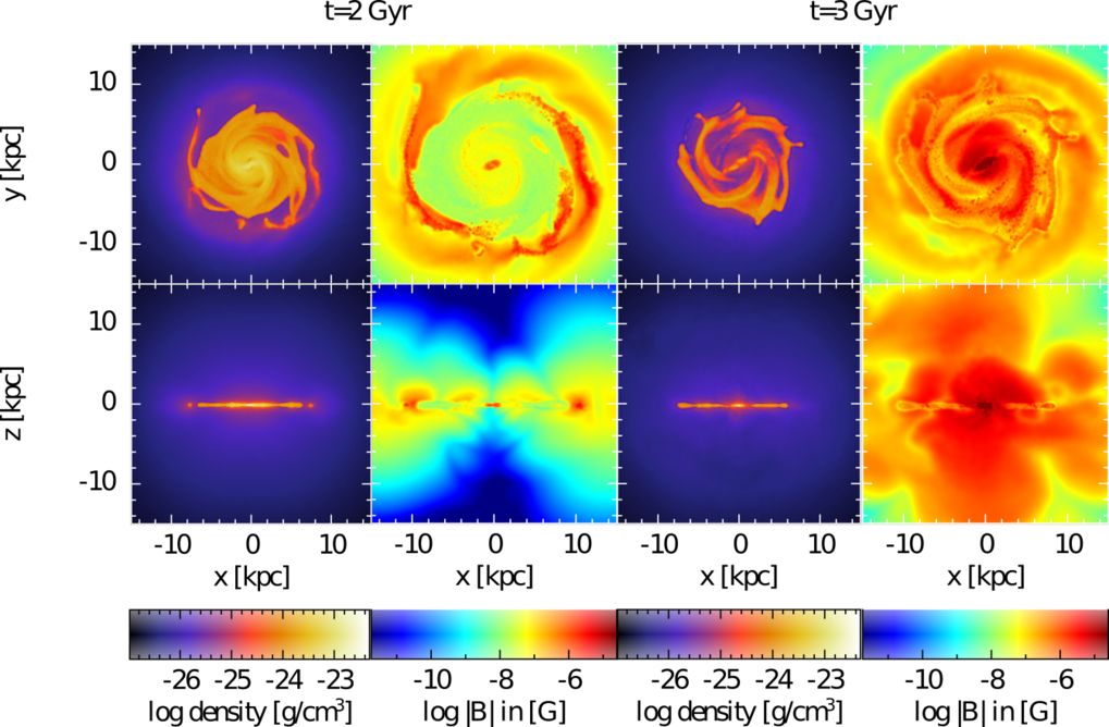 Figure 1: These views show the galaxy in a simulation where the magnetic field is seeded into the ISM with each supernova that occurs. The top and bottom rows show face-on and edge-on views, respectively, with gas density (first and third column) and magnetic field strength (second and fourth column) shown at two different times in the evolution of the galaxy. At 2 billion years (first and second column), thermal pressure is dominating in the galactic disc and outflows due to the magnetic field are not possible. At 3 billion years, the magnetic pressure is dominating and magnetic outflows are possible, which are happening in two cones perpendicular to the disc. Although these cannot be very well identified in the gas-density itself, they can be seen in the magnetic field strength as two lobes above the disc.