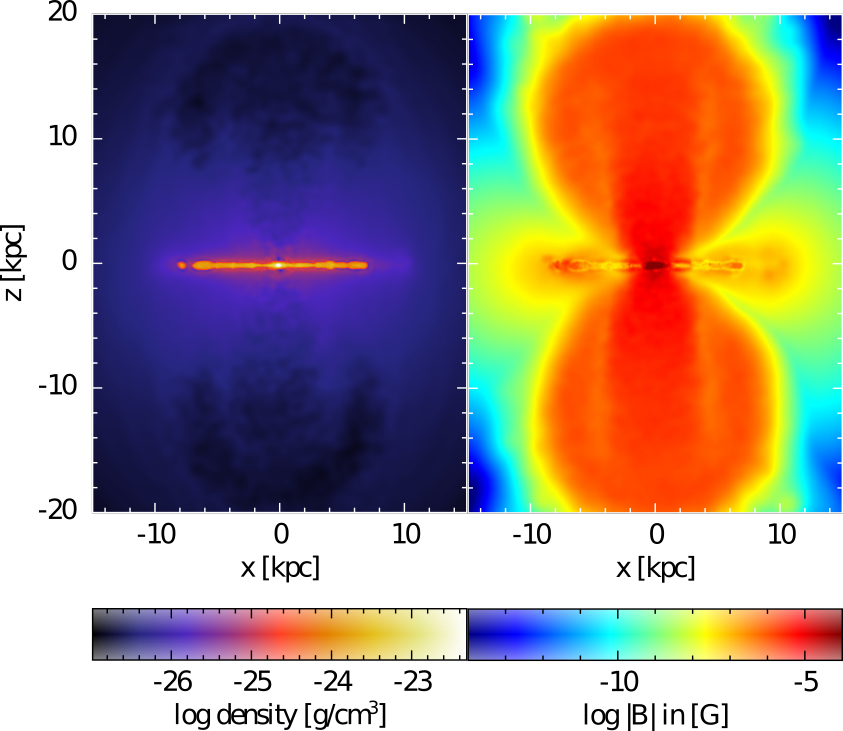 Figure 2: Bi-conical outflow in the magnetic field shortly after its onset at 2.4 billion years in the simulation; the outflow appears in both magnetic field models. The outflow is very prominent in the magnetic field strength, reaching values of up to a few 10 µG, which is comparable with values observed for the Fermi-bubbles reaching far into Milky Ways' CGM. In terms of morphology and velocity, the outflow structure is closer to a wind that is driven by an active galactic nuclei (AGN) rather than driven by stellar feedback.