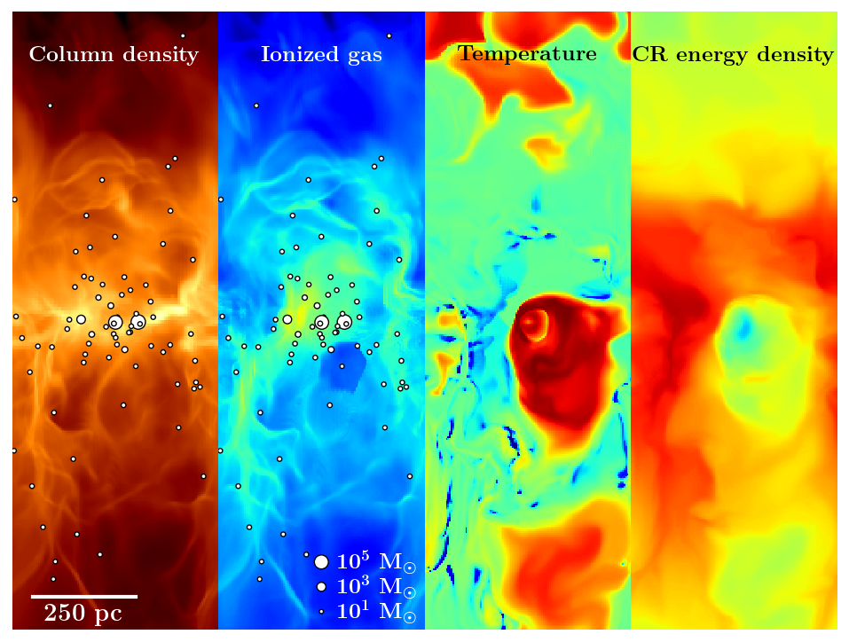 For the first time MPA scientists and European collaborators have simulated the solar neighborhood interstellar medium (ISM), including physical processes following all major thermal and non-thermal components - ionized, neutral and molecular gas, dust, interstellar radiation, magnetic fields, and cosmic rays in the presence of star formation. As the different processes strongly influence each other, the simulations highlight the importance of including them all for a realistic model of the star-forming ISM.